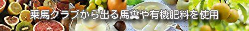 湘南平塚・朝採り完熟梨の伊藤苑 barimage