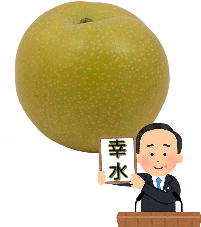 幸水 梨 果実